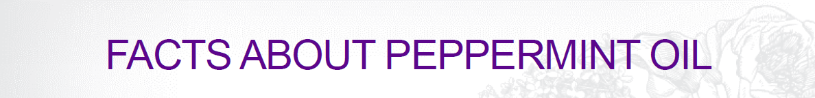 peppermint-5